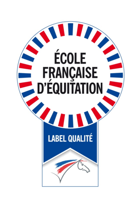 paint_ecole_france_equitation_2