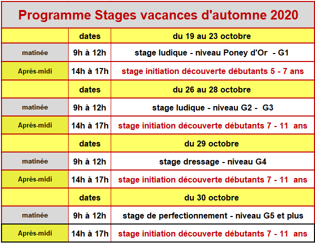 stage_automne_2020